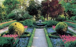 Photo courtesy of the Bartlett Arboretum.